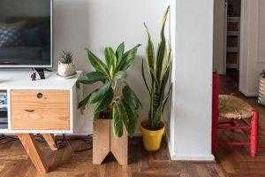 Como fazer uma decoração sustentável em casa
